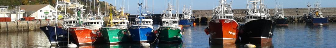 Puerto Profesional de Pesca